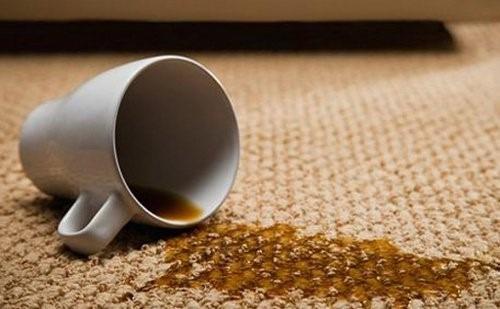 alfombras tapizados limpieza limpieza