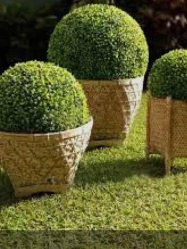 alquiler de bolas de pasto decoracion ideal fiestas