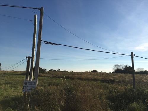 alquiler de terreno en camino moreira