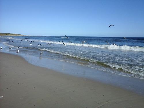 alquiler en san luis, a una cuadra de la playa! imperdible!