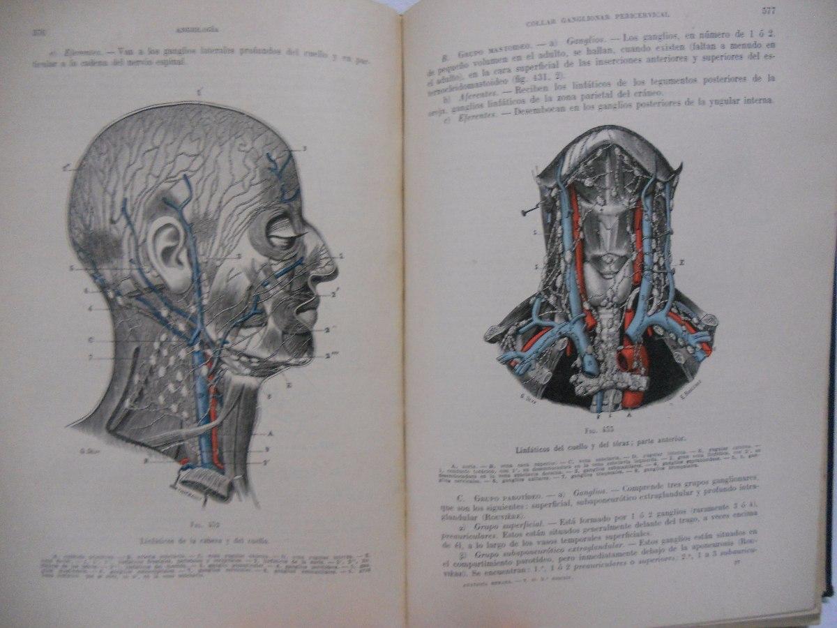 Anatomía Humana Tomo 2 - Testut Latarjet - Edición Año 1949 - $ 700 ...
