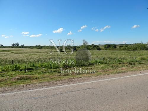 atención!  13 hectáreas con 2 casas y galpones