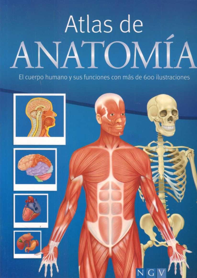 Atlas De Anatomía Ilustrado - Gran Formato - Editorial Nvg - $ 1.100 ...