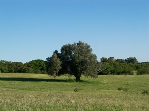 barrio de chacras el olivo / residenciales - turísticas