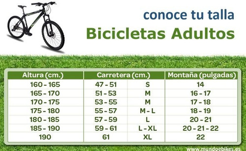 bicicleta bianchi kuma 29.0 2x10 xt / deore r. shox