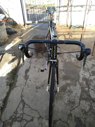 bicicleta ruta focus culebro