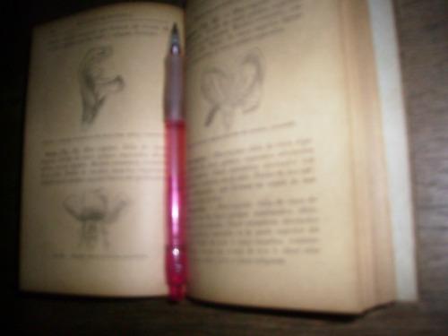 botanica-nociones por jd hooker 1895  paris