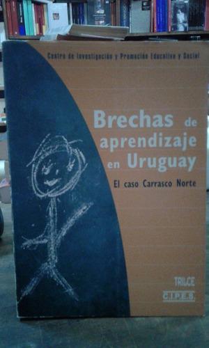 brechas de aprendizaje en uruguay - trilce.