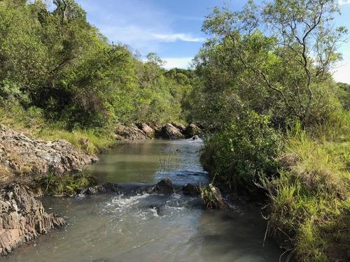 buen campo criador 87 has. sombra, agua, la mejor vista !!!!