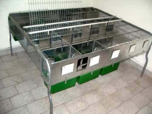 cabaña santamaria-jaulas y capacitación p/produccion conejos