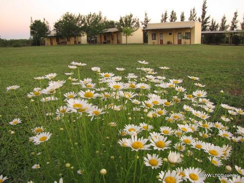 cabañas en el campo zona de termas, alojamiento en argentina