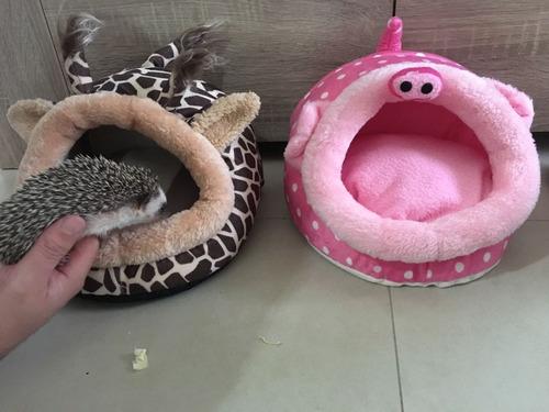 camas para erizos importadas