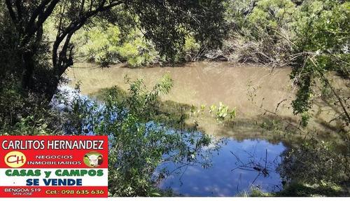 campo 14 cn arroyo lagunas carpincho jabali cierv u$ 69 mil
