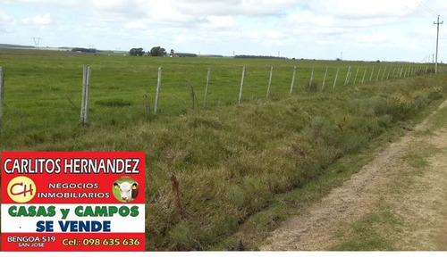 campo 300 ha us 4.900/ ha agricola ganadero posible financia