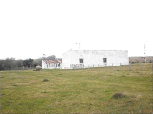 campo 440 has agrícolas en barriga negra, minas-lavalleja.