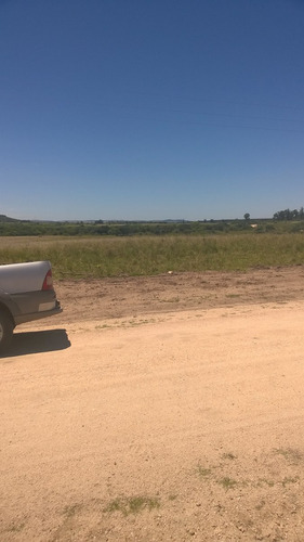 campo 5 hectareas 1/2 a 9 km de ruta 9