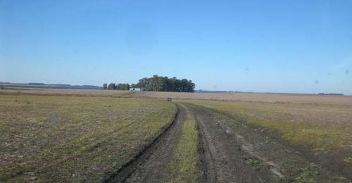 campo agrícola el lago. ref: 1343