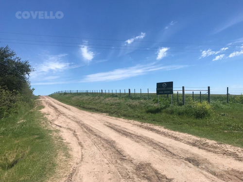 campo, agrícola, ganadero, costa rio uruguay, buen suelo, buenos cercos.