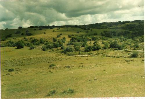 campo alferez de maldonado por ruta 109
