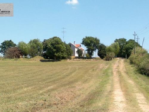 campo - chacra - en venta - nueva helvecia - colonia - #137