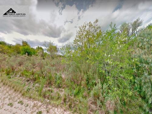 campo - chacra - en venta nueva helvecia - colonia #427
