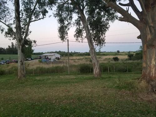campo con buena vivienda