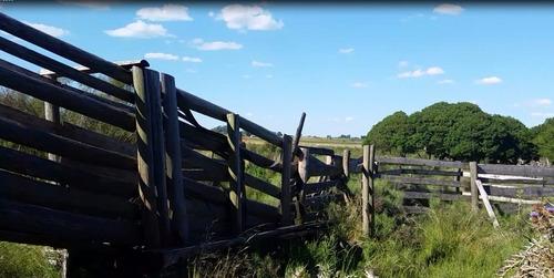 campo de 12 hectáreas con casa sobre ruta,aguadas.