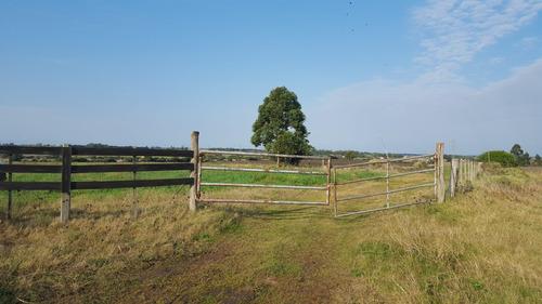 campo de 18 hectareas a 1.5 kmtr de los cerrillos.