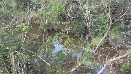 campo de 21 hectáreas en tala con aguada permanente