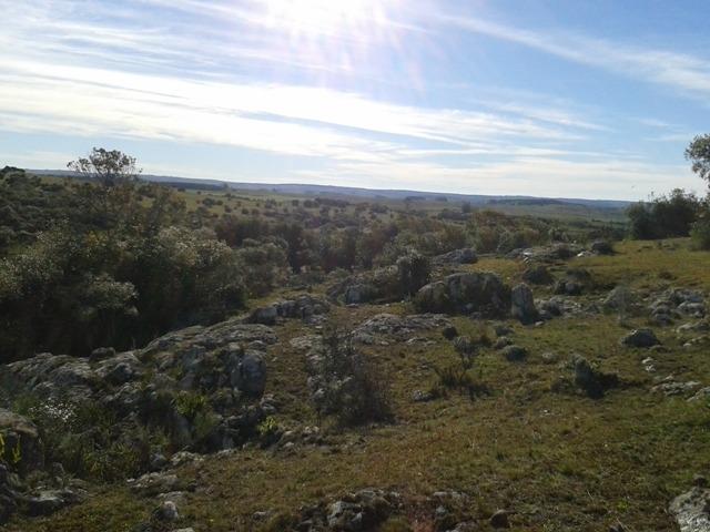 campo de 34 hectáreas con arroyo, imperdible