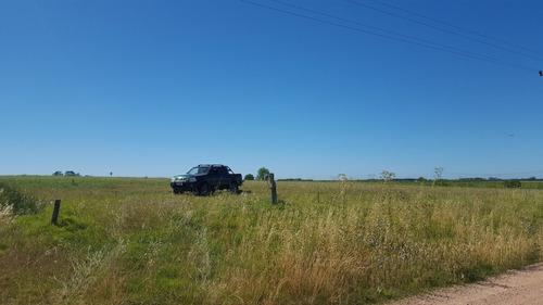 campo de 6.5 hectareas en paso del bote , los cerrillos.