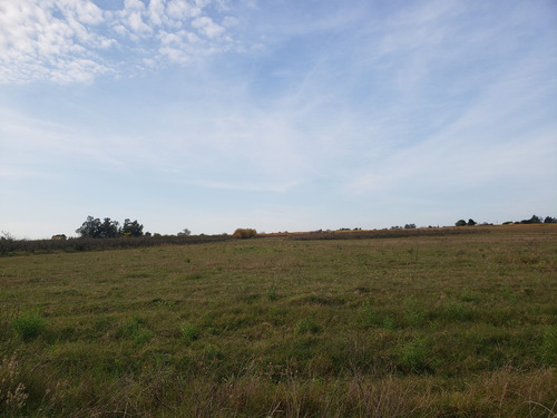campo en canelones