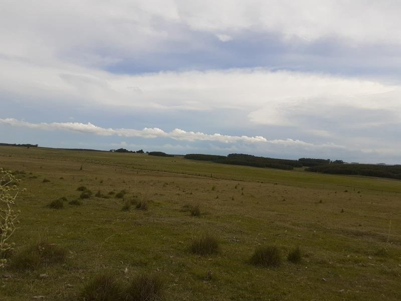 campo en durazno u$s 3400 x hectarea