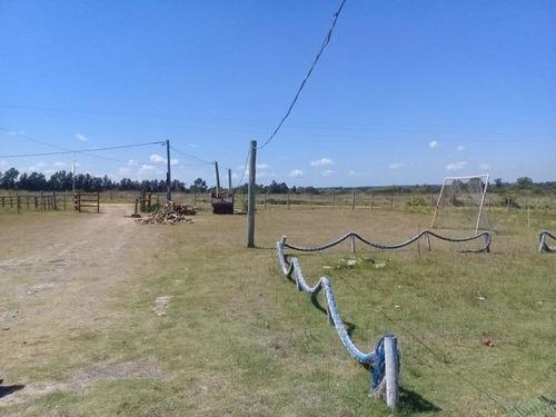 campo en los cerrillos 2 há