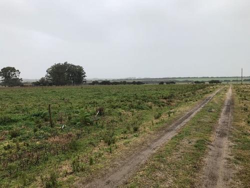 campo en  san jose