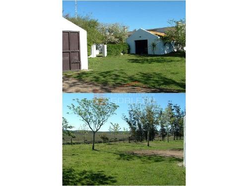 campo en uruguay, rocha - ref: 25118