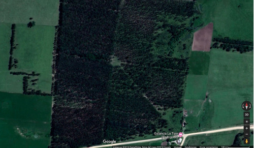 campo forestado a 1 km de rocha