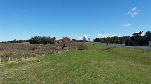campo  frente ruta 9 con 3 has. (ref. y 113)