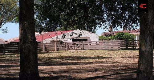 campo ganadero agrícola en venta en treinta y tres. ref:5227