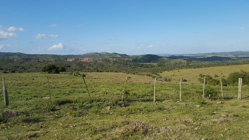 campo ganadero con sectores de pradera. bnas instalaciones