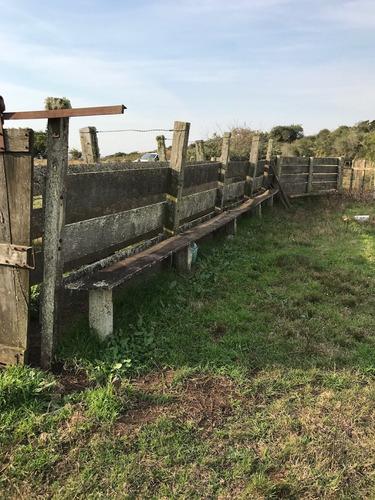 campo lavalleja excelente oportunidad