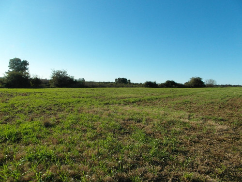 campo muy bien ubicado, apacible, entorno muy natural