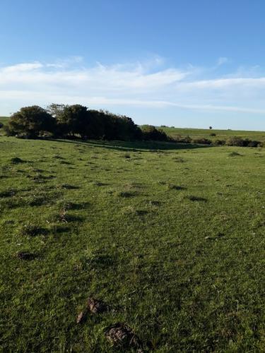 campo muy lindo para chacra