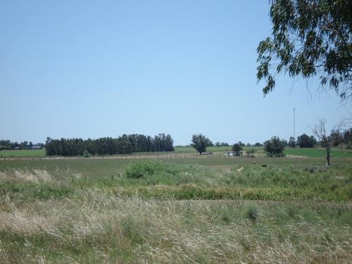 campo para agricultura, ganadería, haras o descanso
