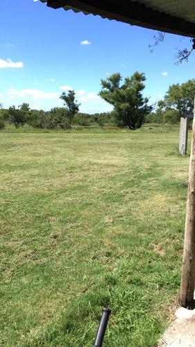 campo unas 8 ha cn casa galpones costa arroyo ute buen acces