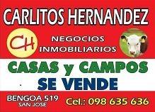 campos estancias chacras en venta en  bolibia - disponemos