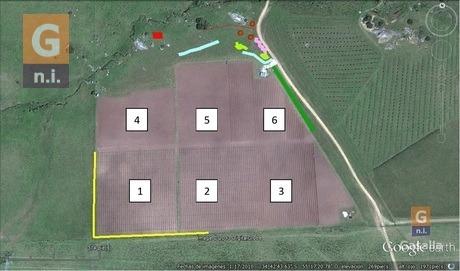 campos y fracciones en lavalleja (lavalleja ruta 60)