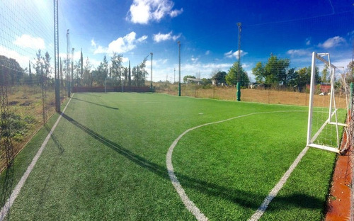 cancha de futbol 5