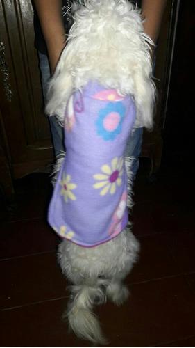 capas para perro doble polar