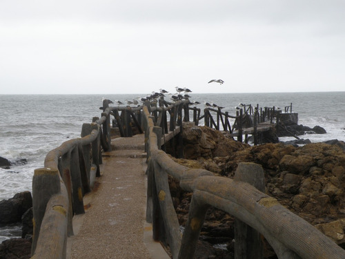 casas en piriapolis temporada - punta fria - frente al mar!